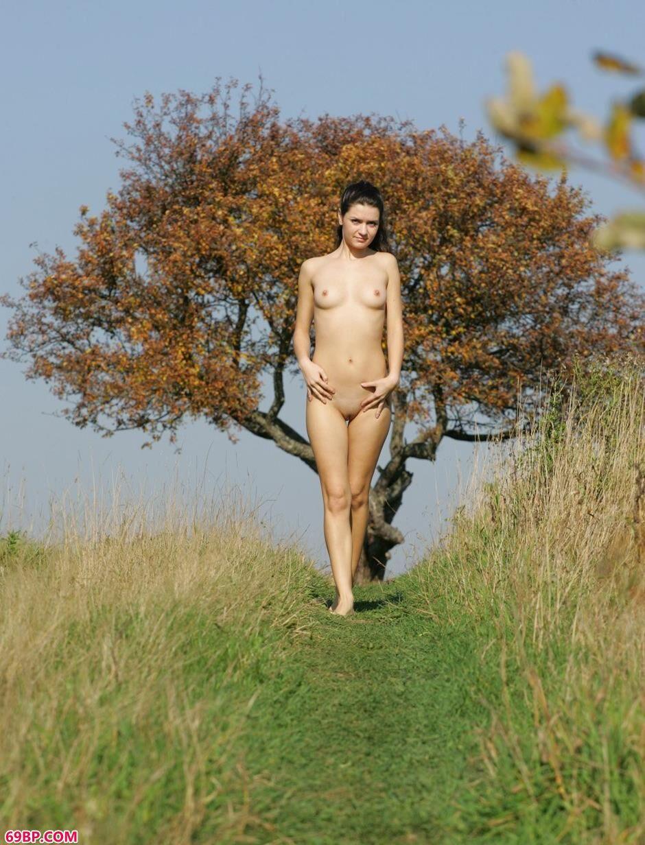 裸模Dasha草地上的性感人体